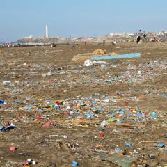 Consecuencias del cambio climático Leonardo Gestión de Residuos