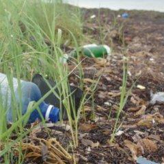 Con el verano y el turismo, el volumen de residuos aumenta