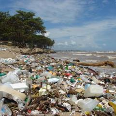 Problemas medioambientales derivados de una mala gestión de residuos