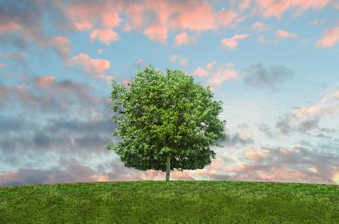 Autorización ambiental integrada Leonardo Gestión de Residuos